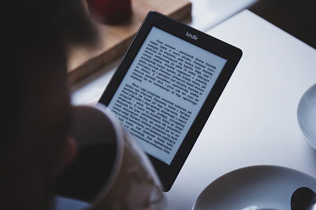 e-book, un livre électronique sur les casinos